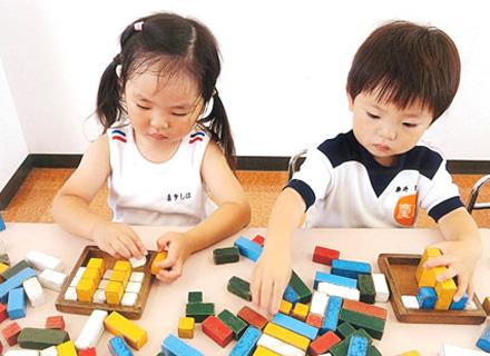 知能を伸ばす積木 Building block